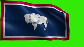 Flag of Wyoming, WY, Cheyenne, July 10 1890, State of The United States of America, USA state - LOOP. Beautiful 3d flag animation on green/blue screen in 4k stock video
