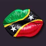 Flaga Świątobliwy Kitts i Nevis ilustracja wektor