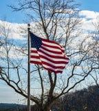 Flaga amerykańskiej latająca wysokość zdjęcie royalty free