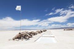 Flaga Argentyna Zdjęcie Royalty Free