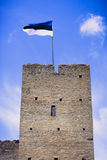 Flaga Estonia na wierza Zdjęcia Stock