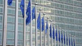 flaga europejskich zbiory wideo