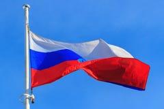 Flaga federacja rosyjska na niebieskiego nieba tle niebieskie tło flagi flagi obramiają złoto Rosji machał wektor Obrazy Royalty Free