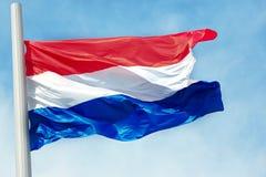 Flaga Holandie Obraz Royalty Free