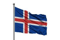Flaga Iceland falowanie w wiatrze, odosobniony biały tło Islandzka flaga obraz royalty free