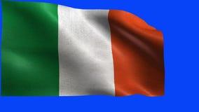 Flaga Irlandia, irlandczyk flaga - pętla ilustracja wektor
