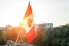 Flaga Kanada od nadokiennego zmierzchu tła Zdjęcia Royalty Free