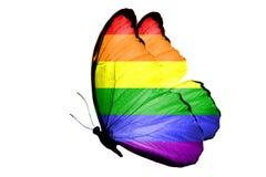 Flaga LGBT na skrzydłach motyl pojedynczy białe tło obraz stock