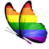 Flaga LGBT na skrzydłach motyl pojedynczy białe tło obrazy royalty free