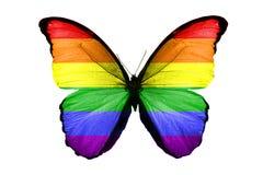Flaga LGBT na skrzydłach motyl pojedynczy białe tło zdjęcie stock
