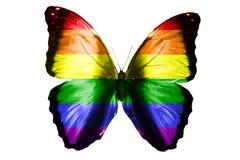 Flaga LGBT na skrzydłach motyl pojedynczy białe tło zdjęcia stock
