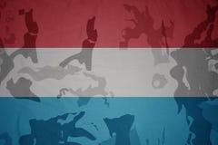 flaga Luxembourg na khakiej teksturze opancerzenia napadu ciała zakończenia pojęcia flaga zieleni m4a1 militarny karabinu s strza Obrazy Royalty Free