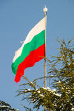 Flaga państowowa społeczność budynek w Pomorie, Bułgaria, zima 2017 Obraz Royalty Free