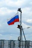 Flaga państowowa Rosja Obraz Stock