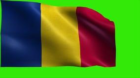 Flaga Rumunia, Rumuńska flaga - pętla ilustracja wektor