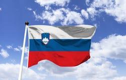 Flaga Slovenia, żakiet ręki zdjęcie stock