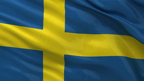 Flaga Szwecja - bezszwowa pętla