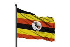 Flaga Uganda falowanie w wiatrze, odosobniony biały tło Ugandyjczyk flaga zdjęcia royalty free