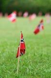 flaga uprawiają ogródek norweg Obraz Royalty Free