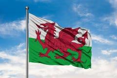 Flaga Walia falowanie w wiatrze przeciw białemu chmurnemu niebieskiemu niebu Welsh flaga zdjęcia royalty free