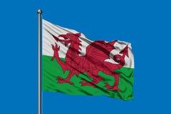 Flaga Walia falowanie w wiatrze przeciw głębokiemu niebieskiemu niebu Welsh flaga fotografia stock