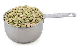 Flageolet beans in a cup measure Stock Image