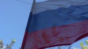 Flagga av den ryska federationen stock video
