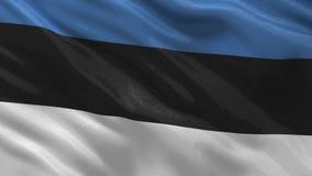 Flagga av Estland - sömlös ögla stock illustrationer