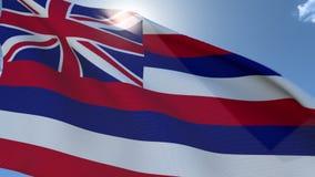 Flagga av Hawaii som vinkar i vinden lager videofilmer
