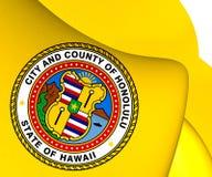 Flagga av Honolulu, USA royaltyfri illustrationer