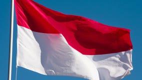 Flagga av Indonesien som fladdrar i vinden