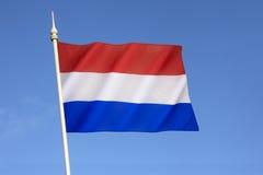 Flagga av Nederländerna Royaltyfri Foto