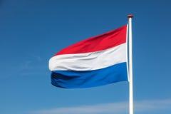 Flagga av Nederländerna Royaltyfri Bild