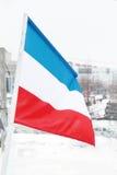 Flagga av Nederländerna på den snöig och molniga dagen för vinter Royaltyfri Foto