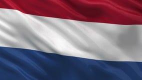 Flagga av Nederländerna - sömlös ögla stock video