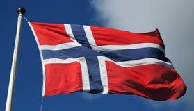 Flagga av Norge Fotografering för Bildbyråer