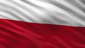 Flagga av Polen - sömlös ögla stock illustrationer