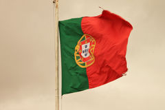 Flagga av Portugal Royaltyfri Bild