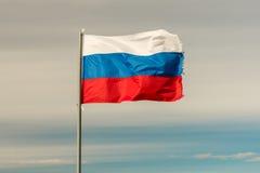 Flagga av rysk federation Royaltyfri Fotografi
