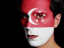 Flagga av Singapore Arkivbild