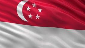 Singapore kön video