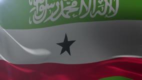 Flagga av Somaliland som vinkar på flaggstången i vinden, nationellt symbol av frihet stock illustrationer