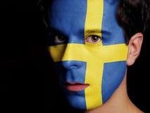 Flagga av Sverige Royaltyfria Bilder
