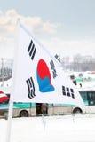 Flagga av Sydkorea på vind på den molniga dagen för vinter Arkivfoton