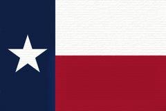 Flagga av Texas Wall arkivbilder
