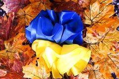 Flagga av Ukraina med band Arkivfoton
