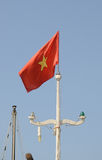 Flagga av Vietnam Arkivfoto