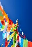 flagga för 5 färg Royaltyfria Foton