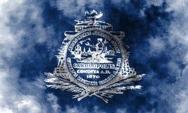 Flagga för charlestonstadsrök, södra Carolina State, Förenta staterna vektor illustrationer