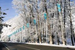 Flagga för Kasakhstan ` s Royaltyfria Bilder